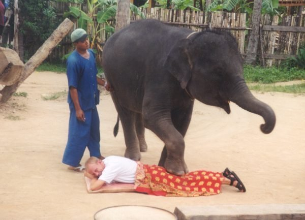 hvad er thai massage thai lille istedgade