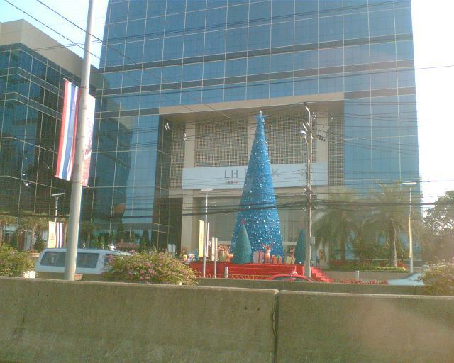 www.thaiguide.dk/images/forum/blaajuletrae.JPG